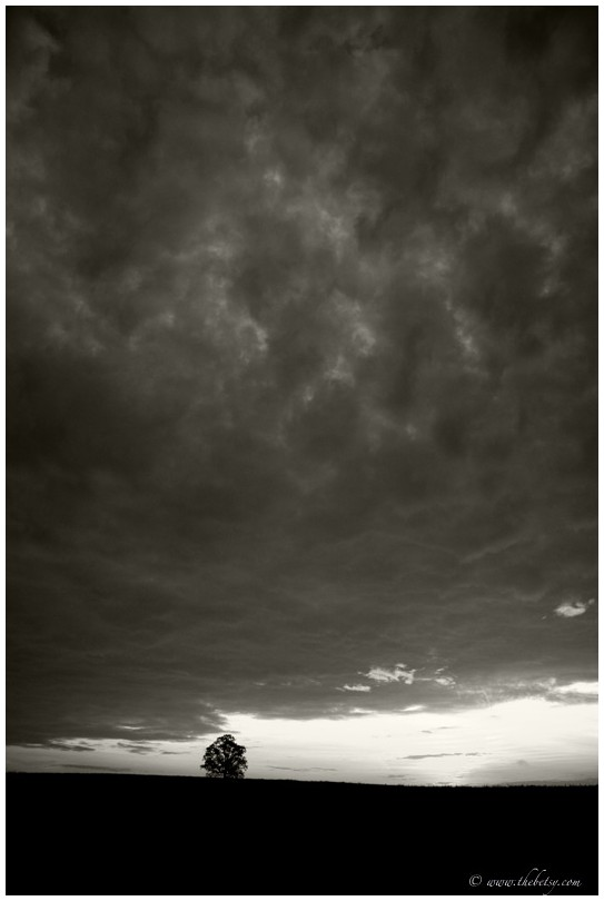 dramatic sky tree mcafee farm mono clouds storm da