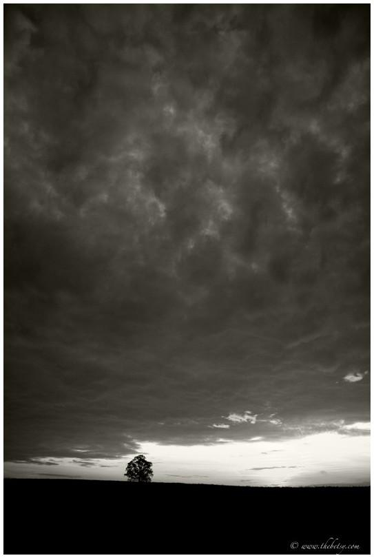 dramatic sky tree mcafee farm mono clouds storm da