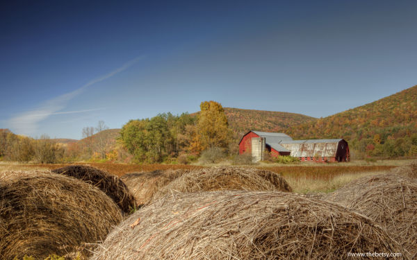 ansonia, wellsboro, red barn, haybales, workshop,