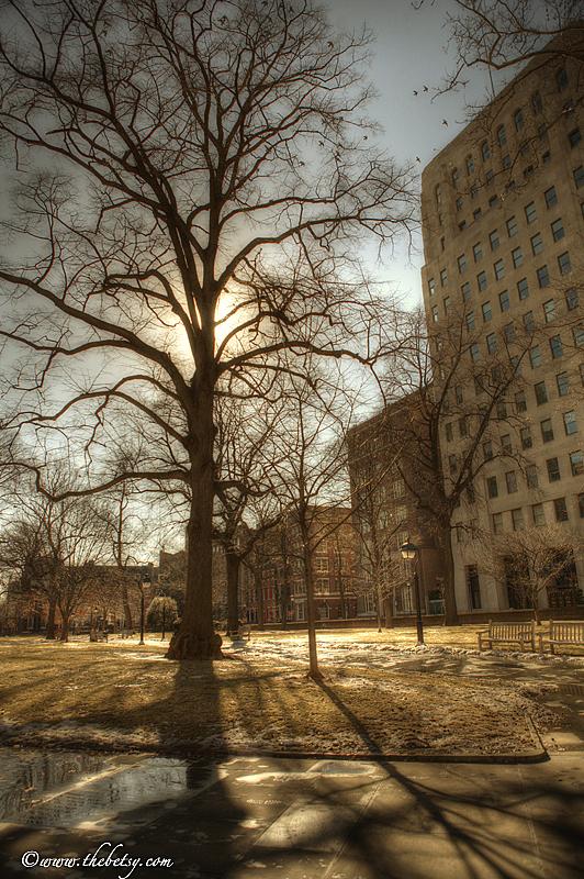 washington square park, philadelphia, winter, snow