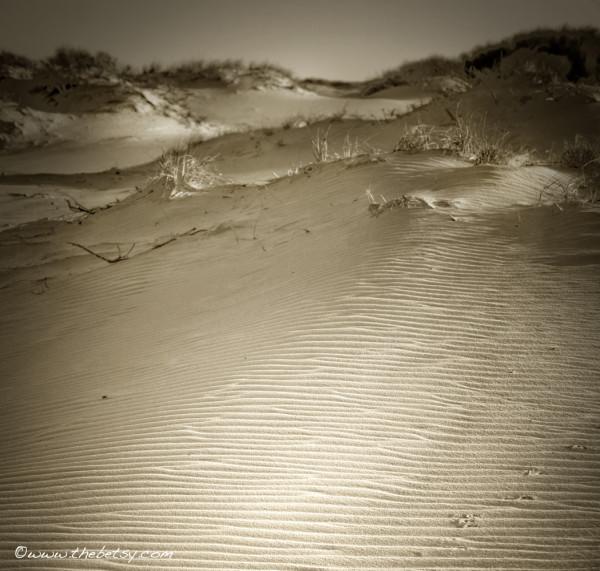 dunes, sand, assateague, beach, ripple