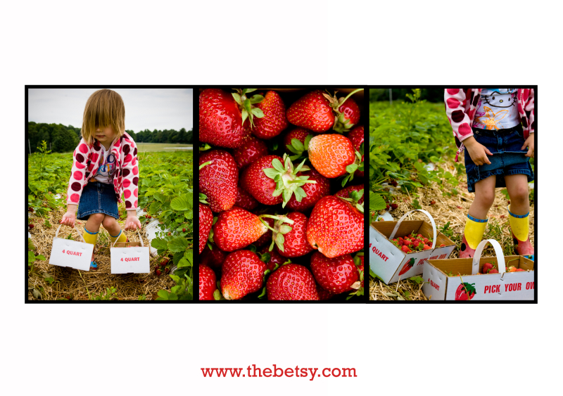 strawberry, pick-your-own, girl, triptych