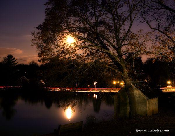 kimberton, night, moon, lake, tree, cars