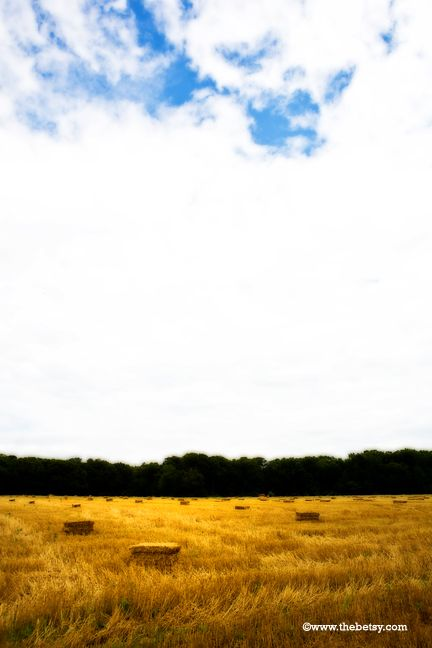harvest, wheat, bales, hay, sky, farm