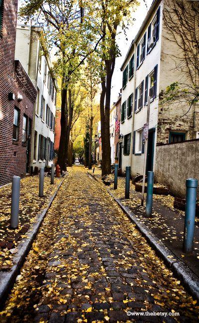 philadelphia, city, street, walk, autumn, leaves