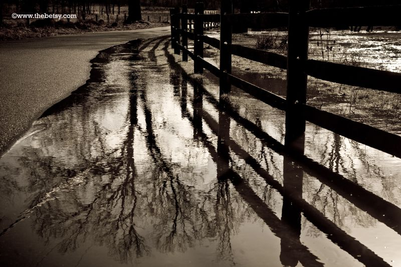 rain, puddle, street, fence, farm, reflection