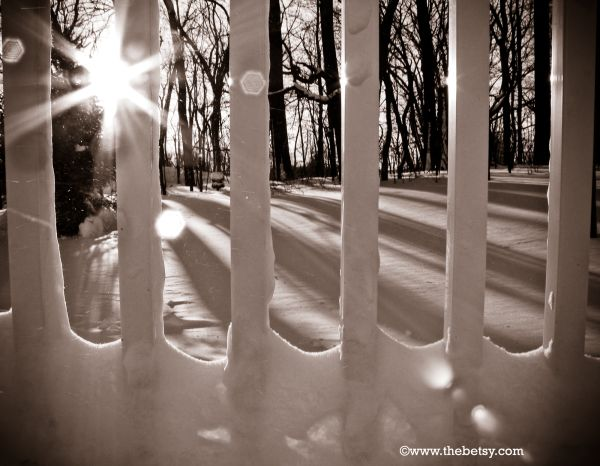 winter, snow, sunshine, lens-flare, blizzard, morn