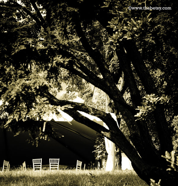 party, chairs, tent, welkinweir, tree, summer