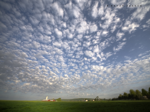 farm, fields, barn, red, clouds, sky, fields
