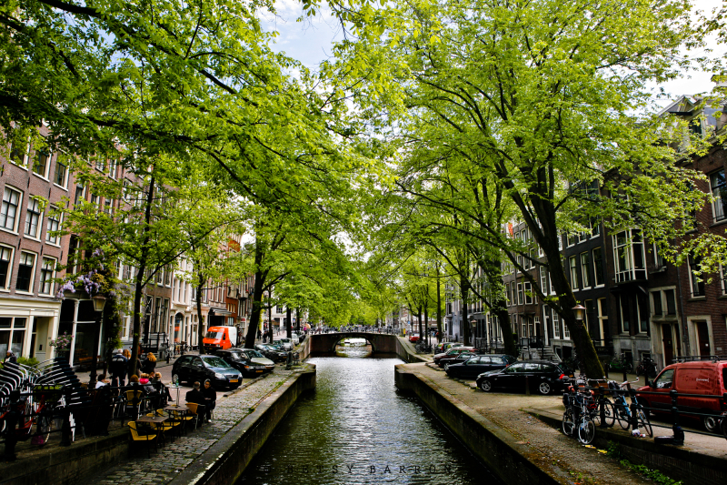 amsterdam, canal, buildings, boats, trees