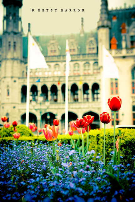tulips, fountain, church, bruges