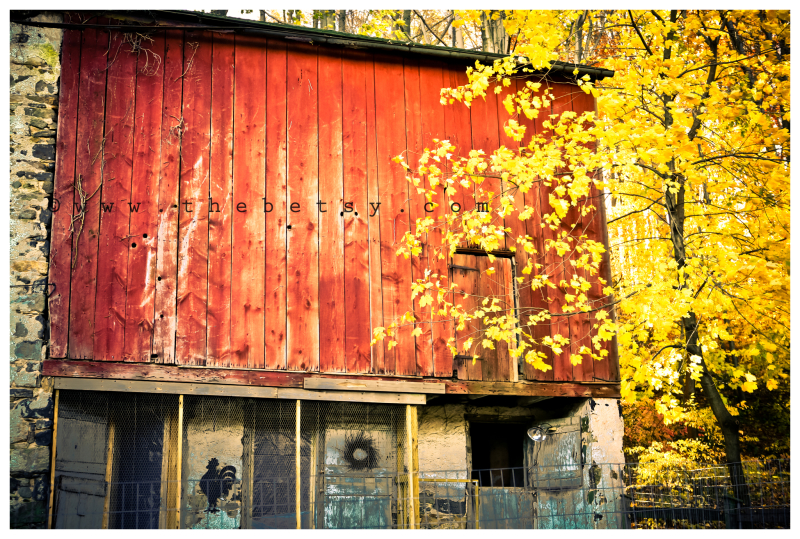 barn, red, autumn, tree, yellow, country