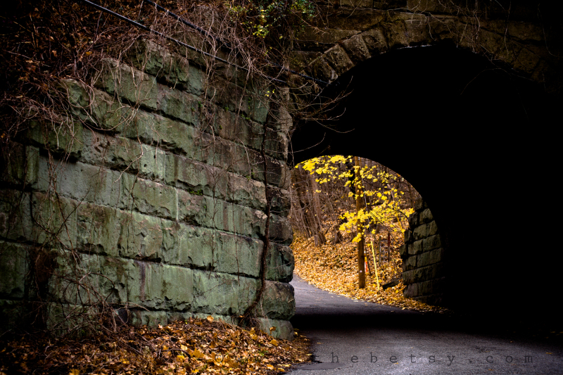 train, bridge, fall, autumn, leaves, road