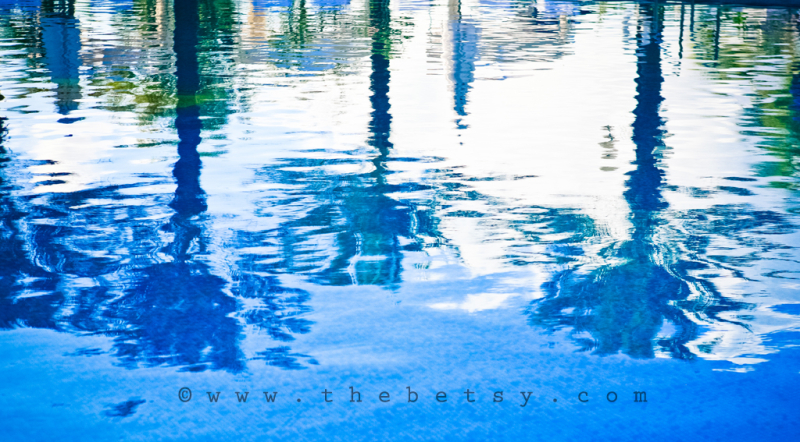 reflection, pool, palm, trees, water, sky
