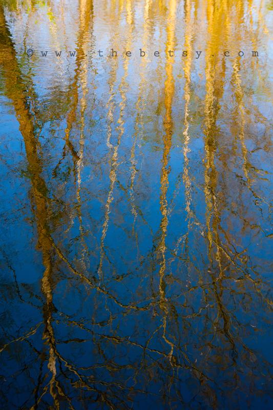 water, lake, reflection, blue spring, trees