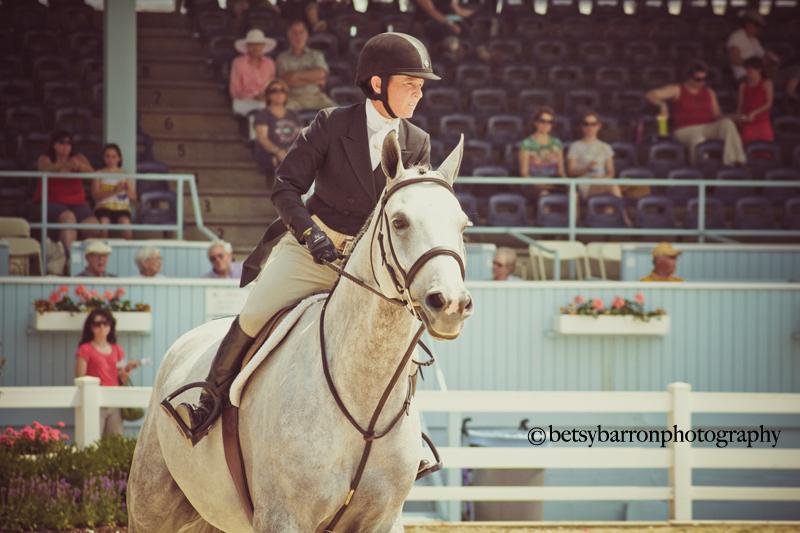 horse, devon, equestrian, show, competition