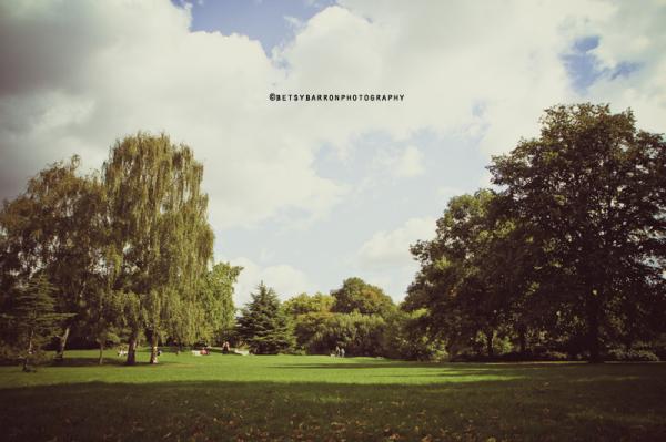 hyde, park, london, trees, grass, green, sky