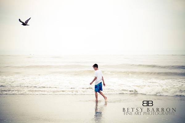 son, child, boy, beach, ocean, bird, summer