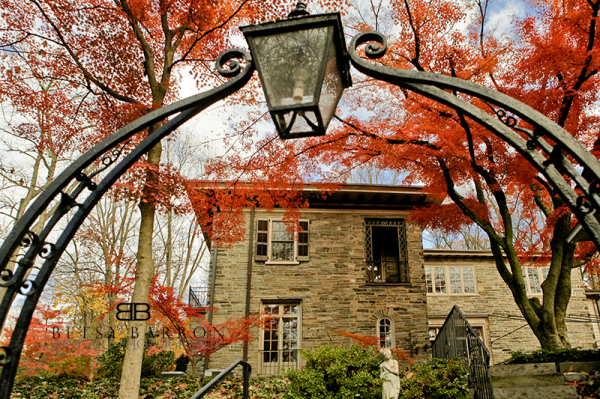 red, tree, arch, building, wrought, iron