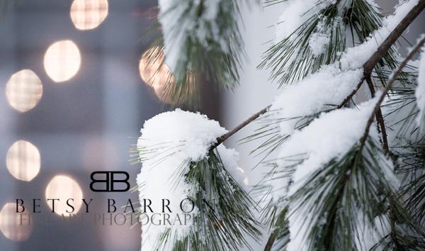pine, tree, snow, lights, window, winter