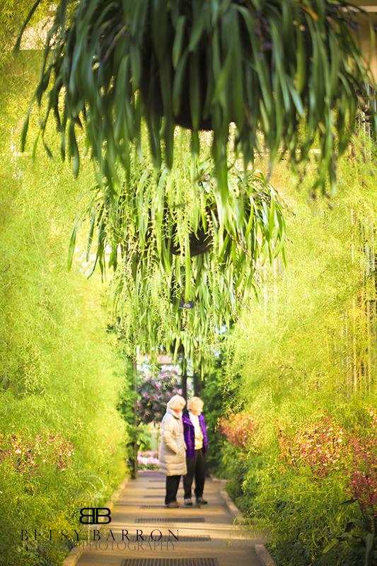 longwood, plants, ladies, garden