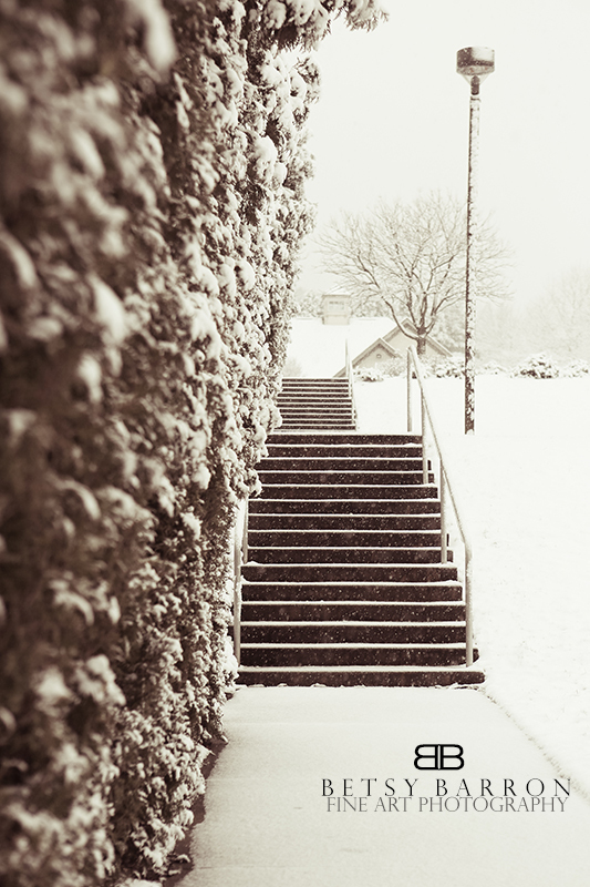 snow, steps, spring, winter, white, cold