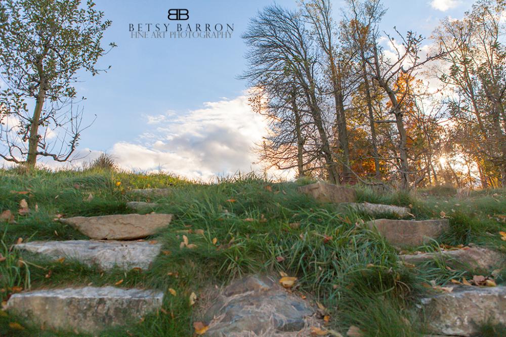 grass, rocks, land, trees, sky, clouds