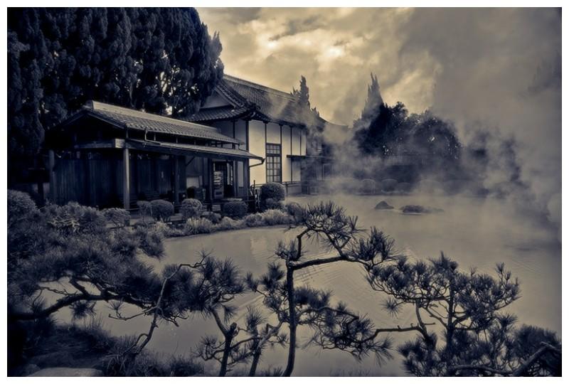 hikari sergio vargas japan kumamoto