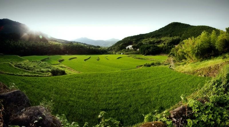 hikari sergio vargas japan kumamoto landscape