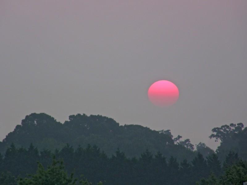 Raleigh Sunrise 20080819