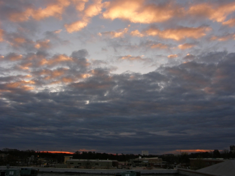 Raleigh Sunirse 20080320