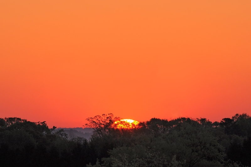 Raleigh Sunrise 20090417