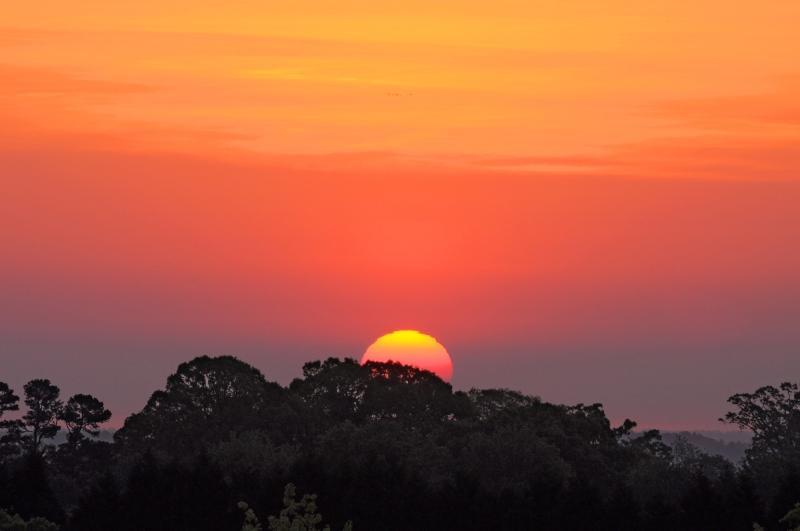 Raleigh Sunrise 20090424