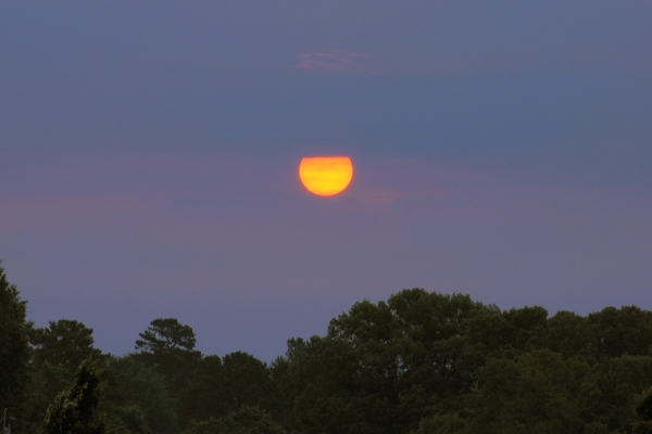 Raleigh Sunrise 20090614