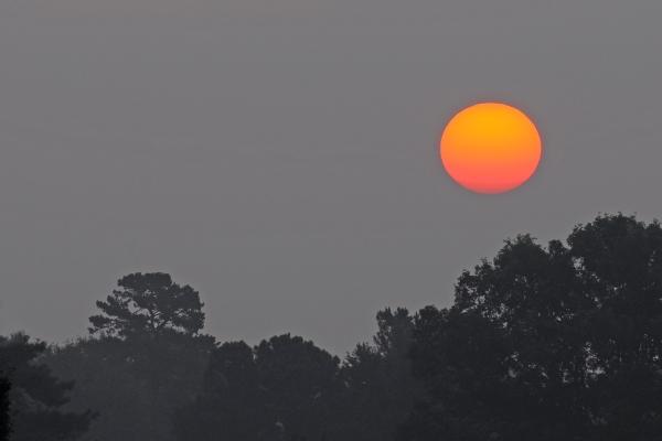Raleigh Sunrise 20090707