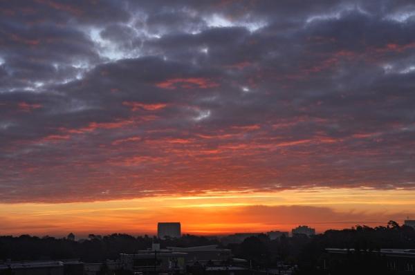 Raleigh Sunrise 20091023
