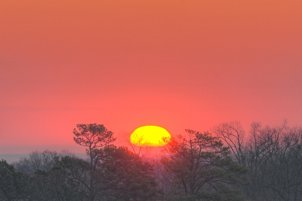 Raleigh Sunrise 20100309