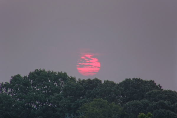 Raleigh Sunrise 20110526