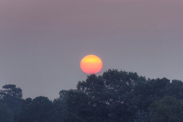 Raleigh Sunrise 20110710