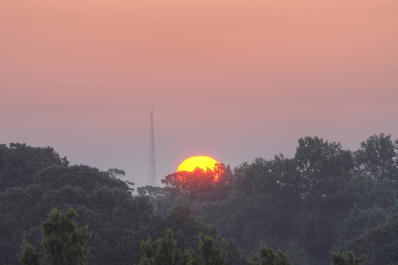 Raleigh Sunrise 20110801
