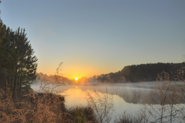 Raleigh Sunrise 20120311
