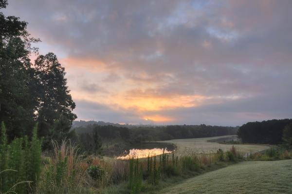 Raleigh Sunrise 20120529