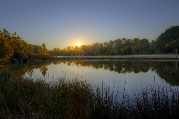 Raleigh Sunrise 20131104
