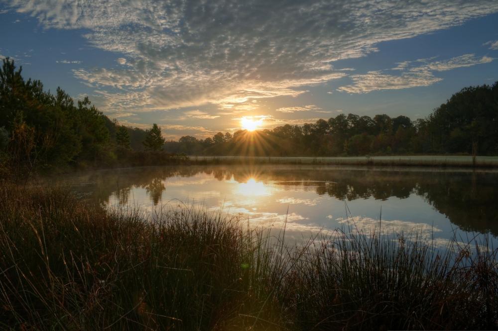Raleigh Sunrise 20131106