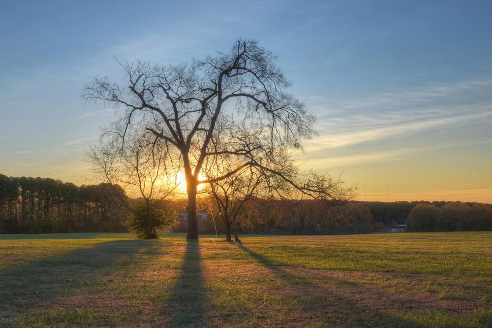 Raleigh Sunrise 20131124