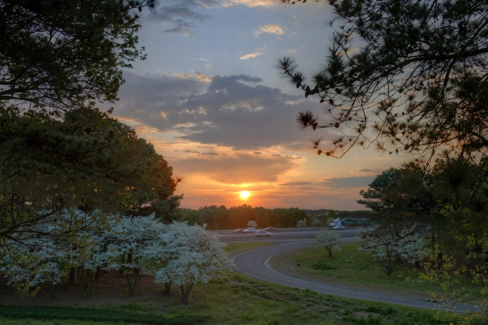 Cary Sunrise 20140422