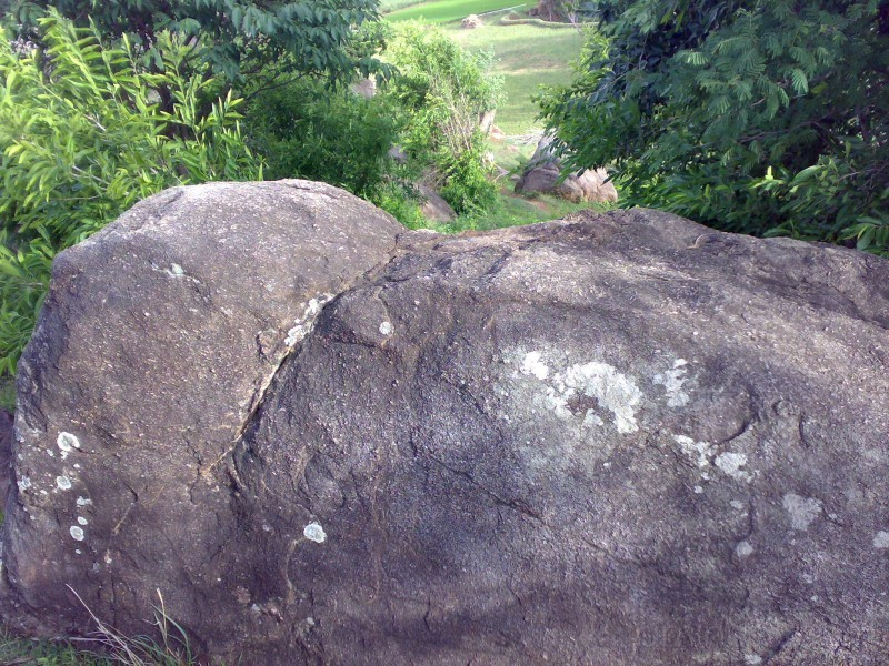 Elephant shaped Rock