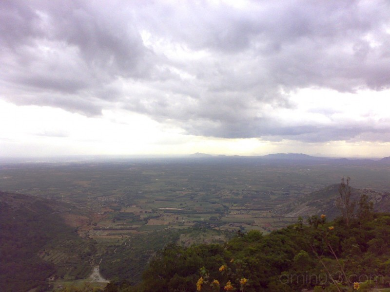 Infinite View