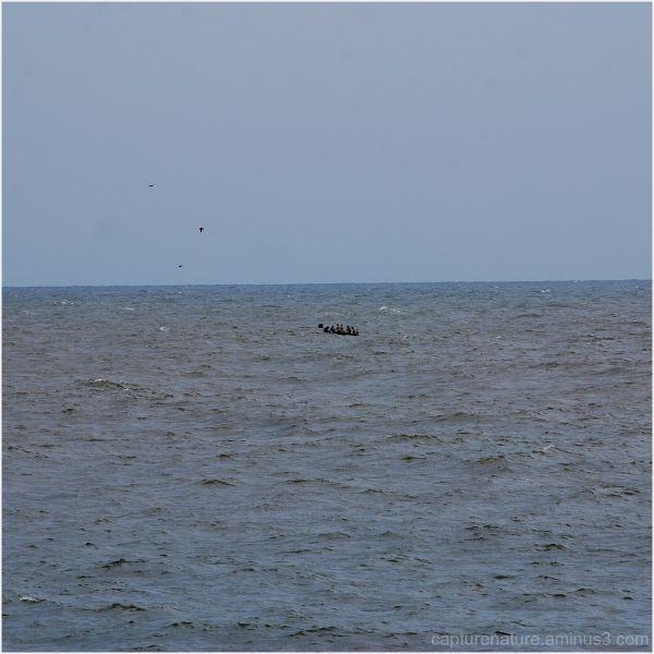 Gokarna Om Beach Karnataka Karwar capture nature