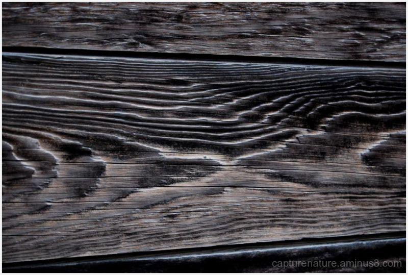 Lachung Sikkim India Wooden door pattern